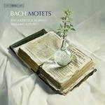 BACH, J.S.: Motets, BWV 225-230 (Bach Collegium Japan, M. Suzuki)