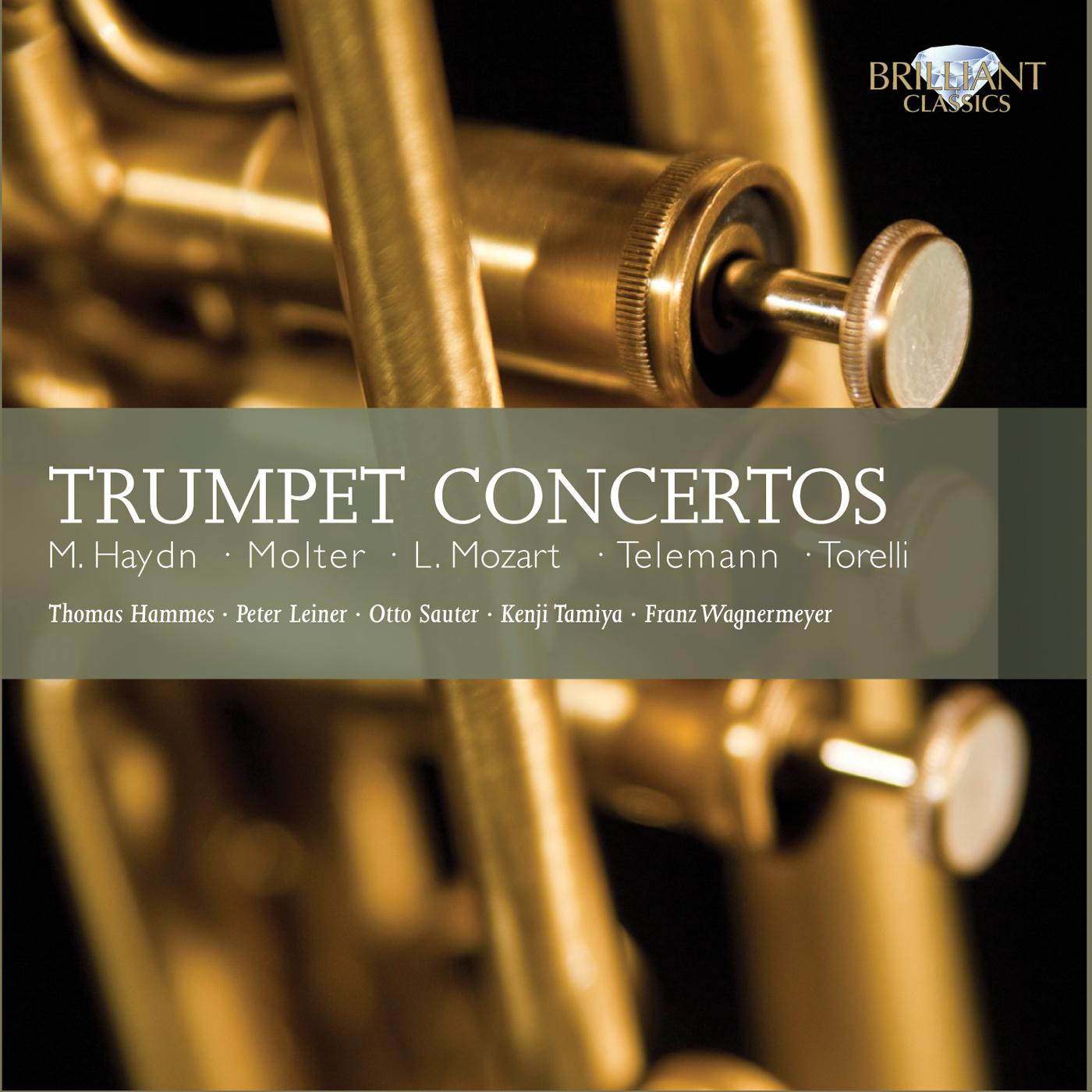 Risultati immagini per telemann trumpet brilliant cd