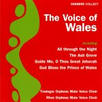 Welsh Male Voice Choirs - The Voice Of Wales