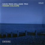 David Rees-Williams Trio: Hidden Colours