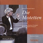 J.S. Bach: The Motets